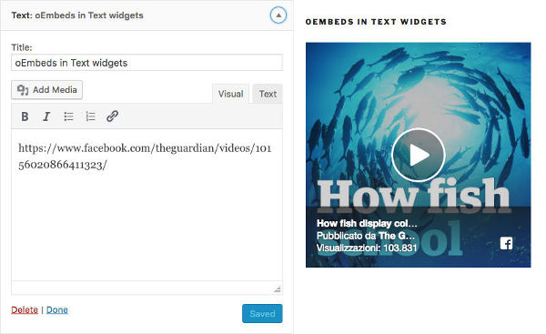 WordPress 4.9 oEmbeds are allowed in Text widgets